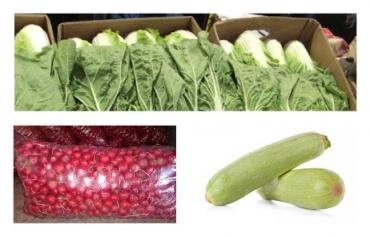 Новый урожай салата китайского, редиса и кабачков