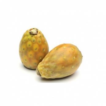 Инжир кактусовый